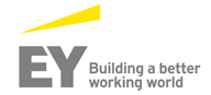 Ernst & Young Consulting